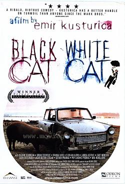 Kara Kedi Ak Kedi